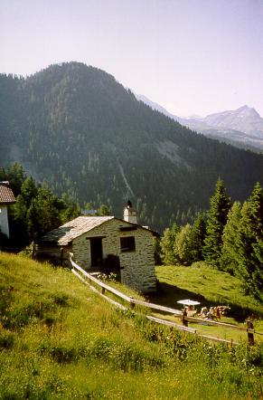 Ferienhaus Rustico Sumprai, Puschlav, Puschlav, Graubünden, Schweiz, Bild 2