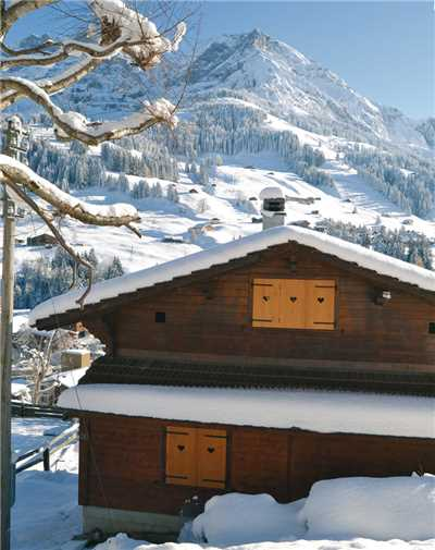 Holiday home Chalet Adelboden, Adelboden, Adelboden - Frutigen - Kandersteg, Bernese Oberland, Switzerland, picture 2