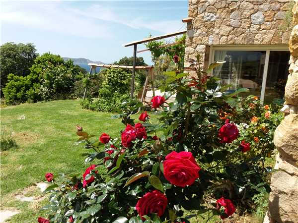Holiday house SCHINALE, Lumio, Upper Corsica, Corsica, France, picture 4