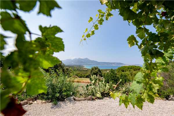 Holiday house SCHINALE, Lumio, Upper Corsica, Corsica, France, picture 1