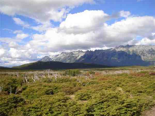 Holiday home im Andental, El Bolsón, Rio Negro, Patagonia (AR), Argentina, picture 5