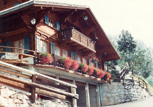 Ferienhaus 'Chalet Sporting' im Ort Jaun