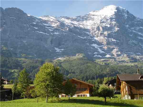 Ferienwohnung Asterix , Grindelwald, Jungfrauregion, Berner Oberland, Schweiz, Bild 3