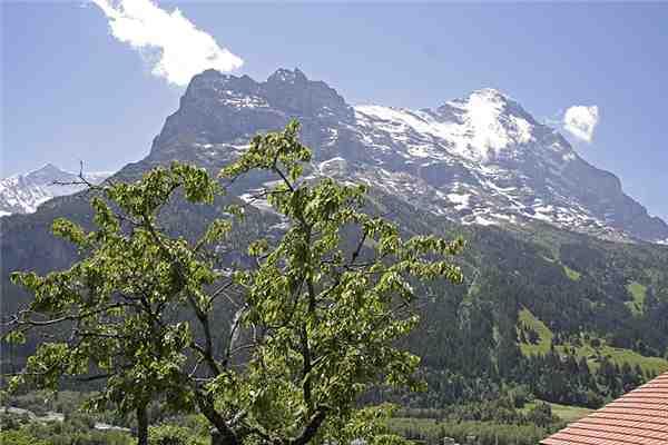 Ferienwohnung Chalet Chessibach 2.5, Grindelwald, Jungfrauregion, Berner Oberland, Schweiz, Bild 7