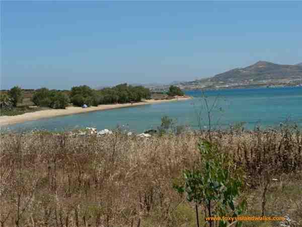 Ferienhaus Frangiska 3, Antiparos, Antiparos, Kykladen, Griechenland, Bild 9