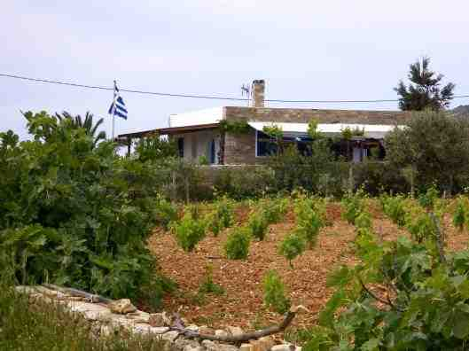 Holiday house Dodoris, Antiparos, Antiparos, Cyclades, Greece, picture 10