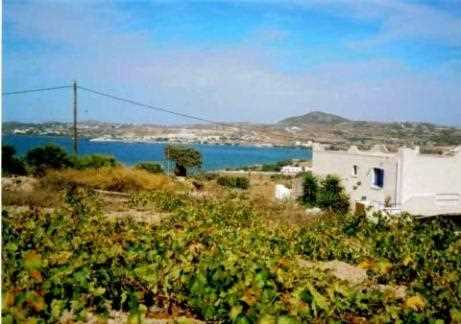 Holiday house Soula, Milos, Milos, Cyclades, Greece, picture 9