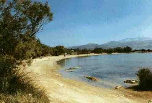 Ferienwohnung Evangelos 1-3, Antiparos, Antiparos, Kykladen, Griechenland, Bild 4