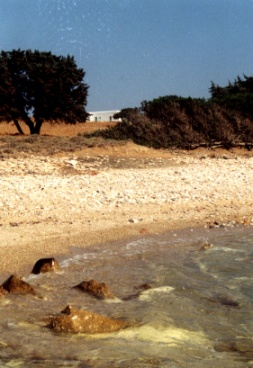 Ferienwohnung Dimitris 4, Antiparos, Antiparos, Kykladen, Griechenland, Bild 7