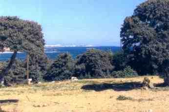Ferienwohnung Dimitris 4, Antiparos, Antiparos, Kykladen, Griechenland, Bild 5