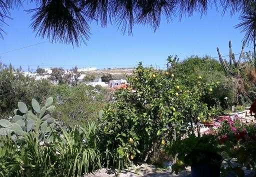 Holiday house Naoussa 2, Naoussa, Paros, Cyclades, Greece, picture 15
