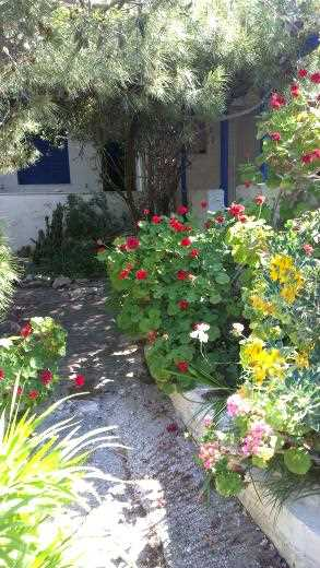 Holiday house Naoussa 2, Naoussa, Paros, Cyclades, Greece, picture 13