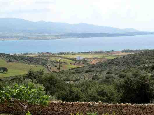 Holiday home Paraskevas, Antiparos, Antiparos, Cyclades, Greece, picture 2