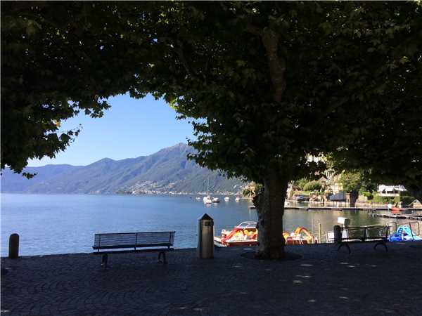 Holiday apartment Ascoresa, Ascona, Lake Maggiore (CH), Ticino, Switzerland, picture 17