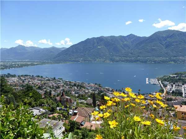 Ferienwohnung Collina d'Oro , Orselina, Lago Maggiore (CH), Tessin, Schweiz, Bild 12