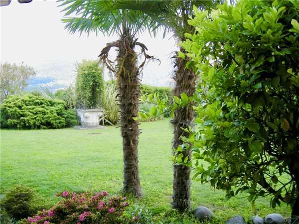 Ferienwohnung Aphrodite, Brissago, Lago Maggiore (CH), Tessin, Schweiz, Bild 2