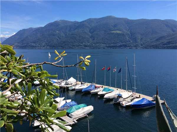Ferienwohnung Monte Carlo, Brissago, Lago Maggiore (CH), Tessin, Schweiz, Bild 1