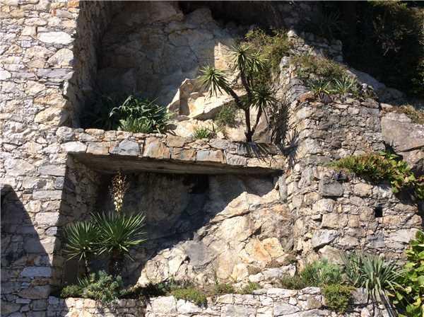 Ferienwohnung Acapulco*****, Ascona, Lago Maggiore (CH), Tessin, Schweiz, Bild 33