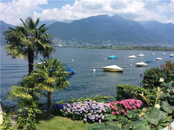 Holiday apartment Casa Elena, Brissago, Lake Maggiore (CH), Ticino, Switzerland, picture 2