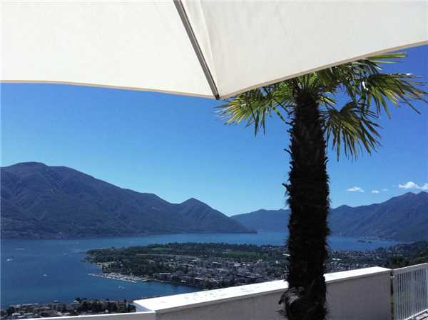 Holiday apartment Attikawohnung La Robinia, Brione s/Minusio, Lake Maggiore (CH), Ticino, Switzerland, picture 2