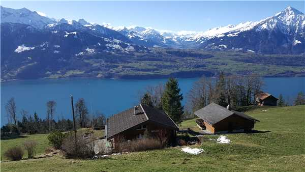 Holiday house Chalet Haueti, Beatenberg, Lake of Thun - Lake of Brienz, Bernese Oberland, Switzerland, picture 1